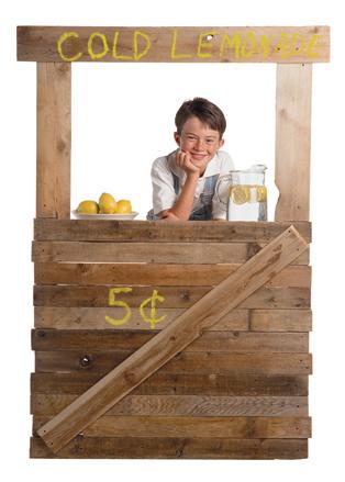 $1000 lemonade stand