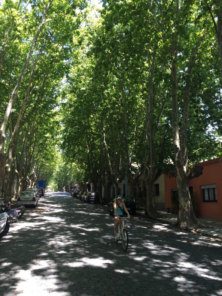 Biking in Uruguay