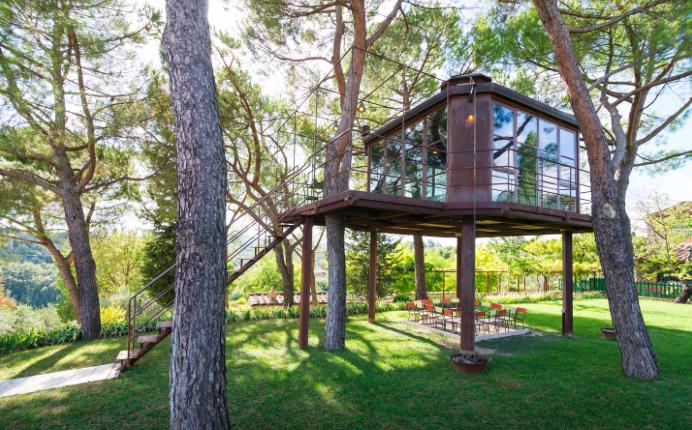 Italian Tree House a Grown-up Tree House