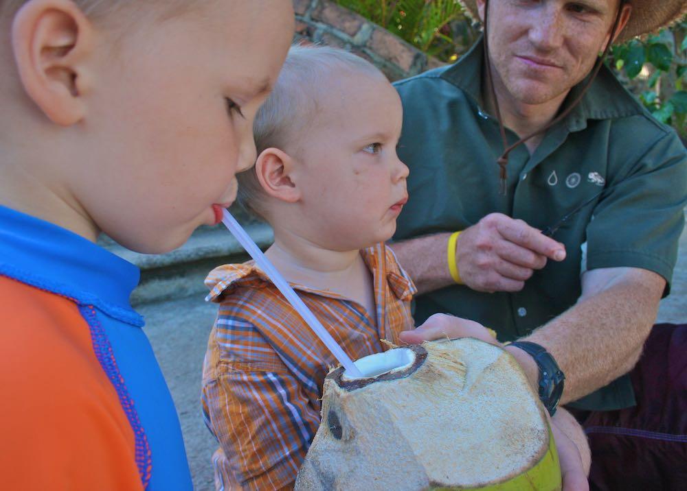 denning coconut